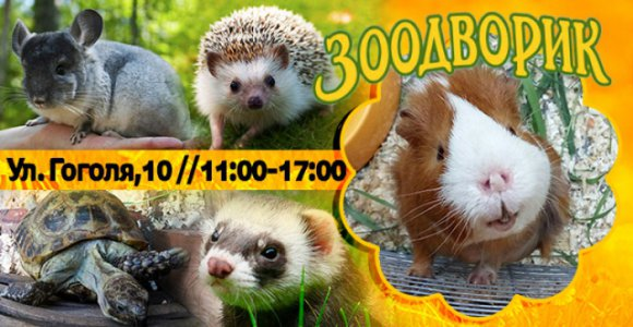 Посещение контактного зоопарка