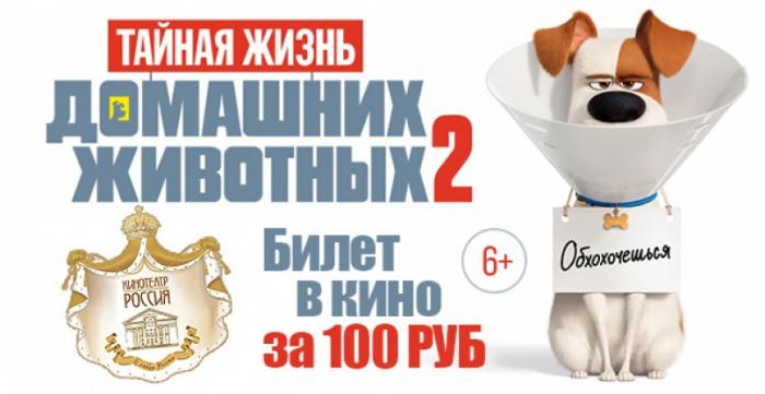 Билет за 100 руб. на мульт