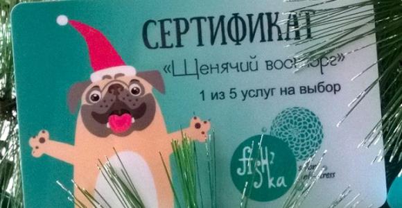 Скидка 50% на подарочный сертификат на 1600 рублей от студии FISH`ka