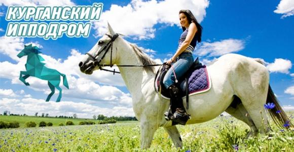 Скидка 50% на 1,5 часа прогулки на лошади на Курганском ипподроме