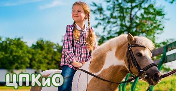 Скидка 50% на прогулку верхом на пони в ЦПКиО