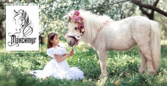 Скидка 50% на фотосессию или прогулку на лошади в конном клубе Максимус