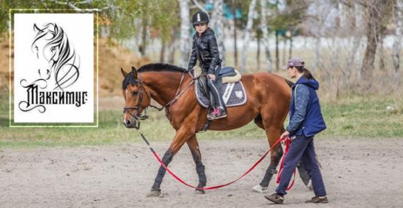 Скидка 50% на индивидуальное занятие по верховой езде в конном клубе Максимус