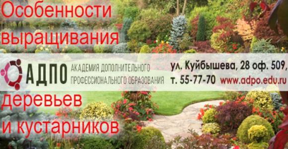 [{image:\/uploads\/deal\/4412\/5c8a540113805443df6e9c37eac39a14.jpg,cover:1}]