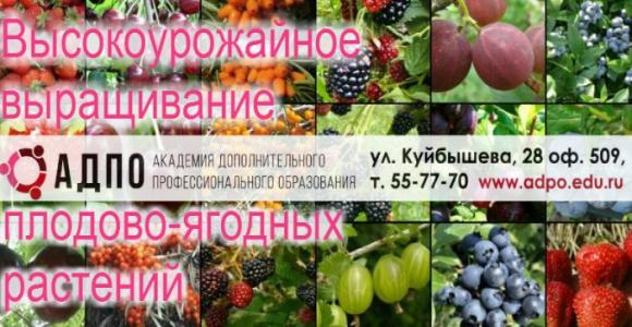 [{image:\/uploads\/deal\/4415\/7051ac2e2d836d93419c3887d7e2b290.jpg,cover:1}]