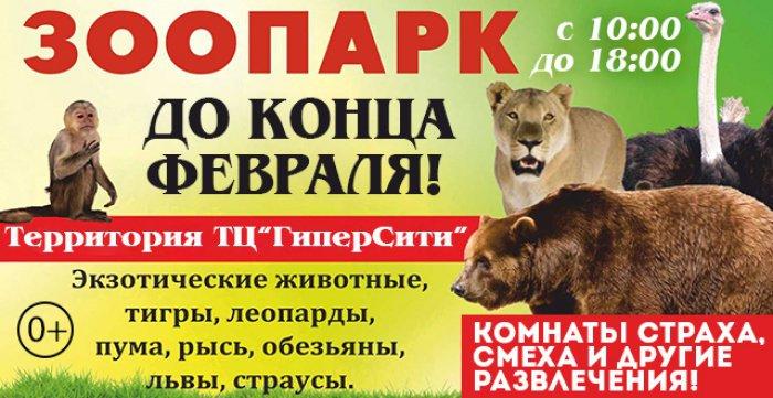 Посещение передвижного зоопарка  и аттракциона (2 персоны)