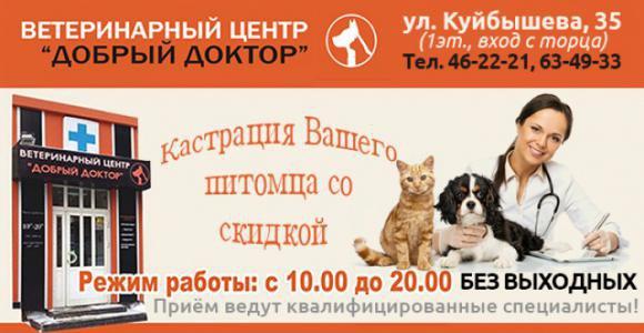Кастрация кота от ветеринарной клиники Добрый доктор