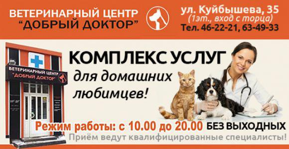 Стрижка кота, кошки или стерилизация от ветеринарной клиники Добрый доктор
