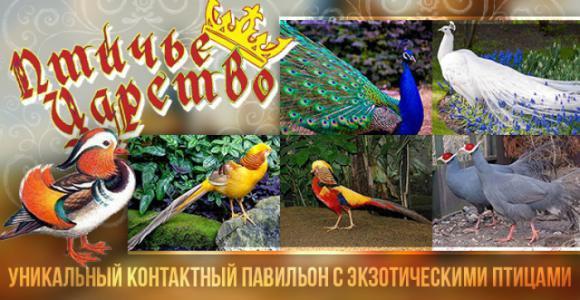 Скидка 50% на посещение Птичьего царства в ЦПКиО