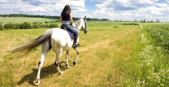 Скидка 64%  на 1 час  конной прогулки в будний день на ранчо